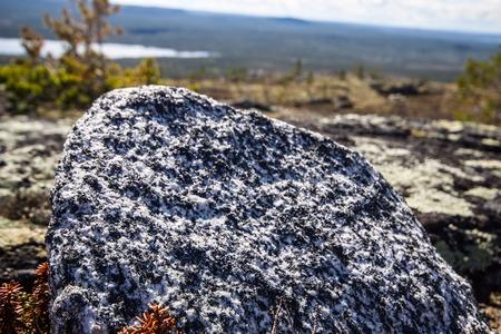 educacion ambiental: El sitio de rocas y plantas específicas raras. Posición de la cámara baja