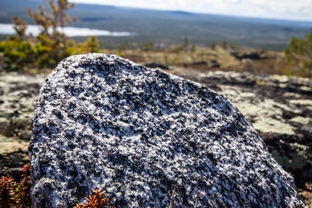 rare rocks: site of rocks and rare specific plants. Low camera position