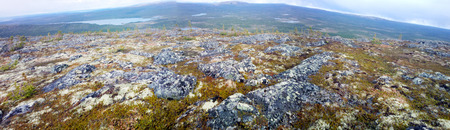 goodly: mountain tundra and forest at  bottom of  wonderful polar landscape