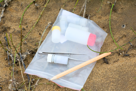environmental science: Simple equipment for environmental field research in soil science, botany, Zoology