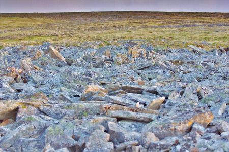 sediments: Upright in tundra layered rocks. Novaya Zemlya archipelago, Russian Arctic