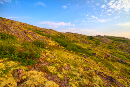educacion ambiental: tundra de la montaña cerca de la costa del mar maravilloso paisaje polar