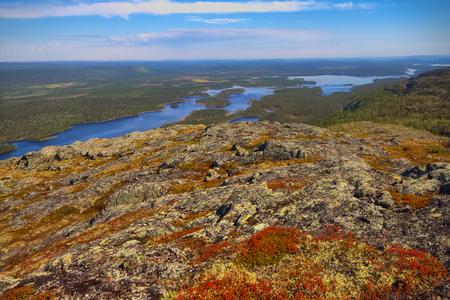 environmental education: tundra de la monta�a y el bosque en el fondo del paisaje maravilloso polar