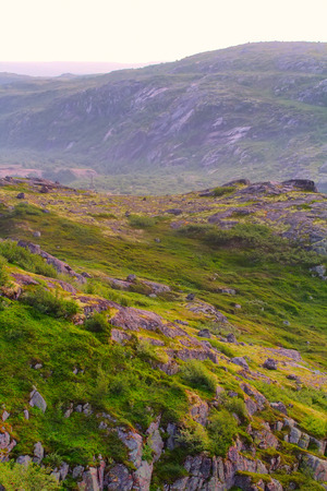 educacion ambiental: tundra de la monta�a cerca de la costa del mar maravilloso paisaje polar