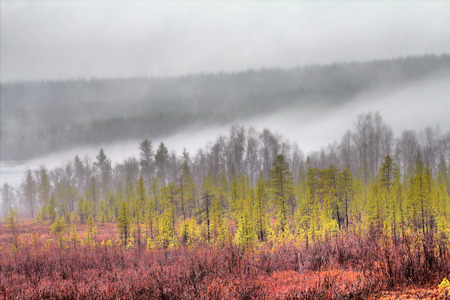 Fog coming down from mountains on quiet forest lake. Deciduous and coniferous forest, shrubs with green buds, early spring. HDR foto