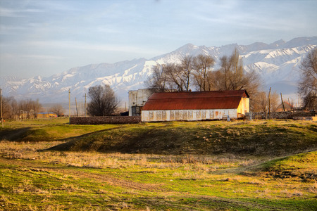 Kazakh village in foothills of Kopet Dagh ridge, Middle Asia 2. Kishlak (village) with Lombardy poplar (Populus pyramidalis) and Spanish broom (Spartium junceum) on background of snowy mountains Stock Photo