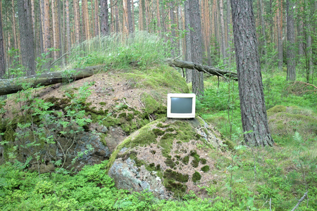 computerization: Old monitor storm threw into pine woods.  Noise of wind and waves. Gadget concept