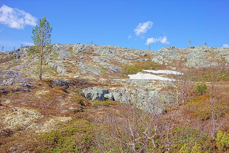 educacion ambiental: mountain tundra near sea coast  wonderful polar landscape
