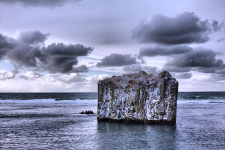 Pole in ocean - uninhabited island. Rock with vertical walls. Basaltic parting, basalt columns. On island sit black seabirds. Toning Stock Photo