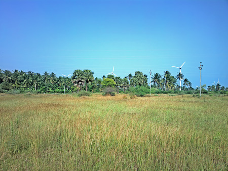 alternateur: Alternative energy sources 4. Wind farm in Indian province of Kerala. Many wind-powered generators stand in coconut palms forest