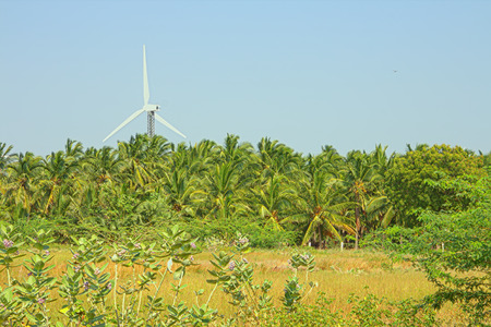 alternative energy sources: Alternative energy sources 8. Wind farm in Indian province of Kerala. Many wind-powered generators stand opposite to mountainous terrain