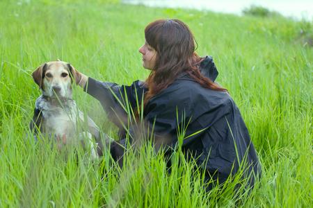 girl dressiruem dog outdoor. hound in grass fields with hostess Stock Photo