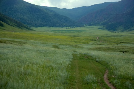 Want to live here. Attractive mountain valley with green grasses, quaking grasses, forest and small house, Altai mountains, Asia