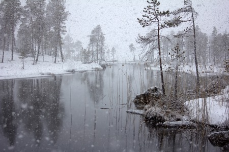 late autumn: Dense big snow falls over forest and river Stock Photo
