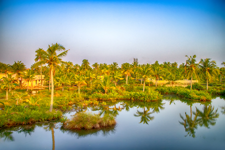 Kerala backwaters, India. Tropical landscape. Channels and towns under palm trees