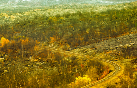 Railway in mountains leads from mines for extraction of nickel and platinoids to metallurgical complex. Autumn scenery and railway line - Around dead forest and bright willows. Surrounding of Nickel