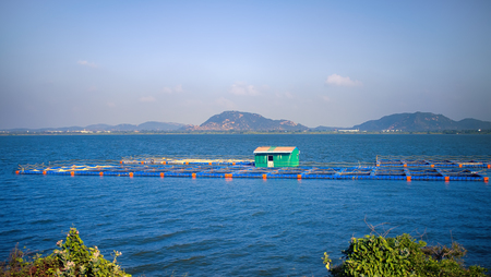 fishing industry on great lake in India. cages fish farming