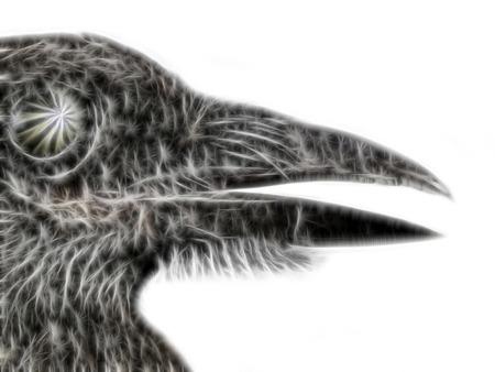 Abstract fractal light background. Symbolic figure. Black bird with knife-like beak, black crow, talking Raven. Raven Nevermore. Edgar Allan Poe
