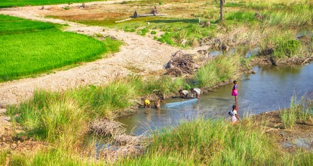 Children fishing with nets in channel at edge of rice fields, malnutrition