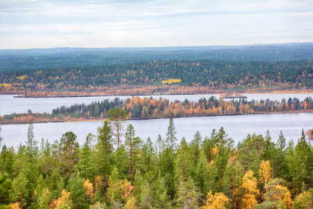 Mellow autumn. Midst of autumn in Boreal coniferous forests with admixture of birch and aspen, lake country. Scandinavia, Lapland Stock Photo