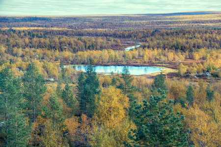Lovely river landscape in autumn yellowed forest, boreal forest (taiga), mellow autumn, Scandinavia