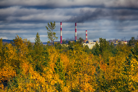 Autumn yellow forest and steel mill (metallurgic works). Smoking chimneys. The combination of beauty and harm to environment