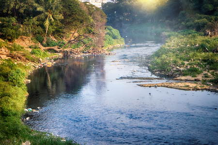 Protect natural environment. Lovely picturesque river dies because of pollution, photograph in contour Stock Photo
