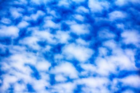 High cloud (altocumulus clouds) sheep, clouds, fleecy, fleece clouds at sunset, sky, heaven
