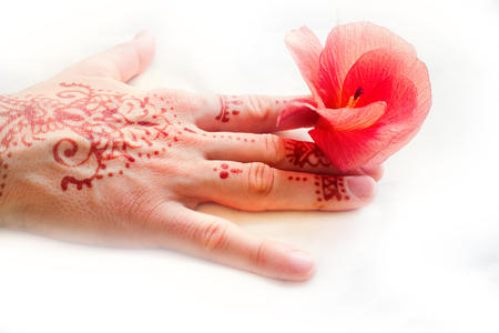 Hindu pattern on female hand and red flower tropical hibiscus. Body painting in Indian style, language of flowers, symbol of universal love, appeal to Lakshmi for happiness, female ornamentation Stock Photo