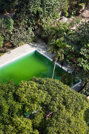 India in winter, tropical winter. Pool with green water among trees and palm trees. View from top.
