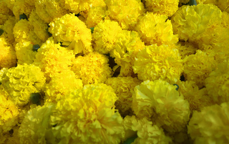 Vegetables, flowers and fruits in Indian Bazaar. Yellow carnation tightly-made bouquet, yellow floral background