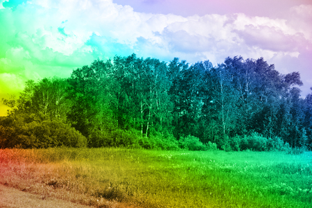 Fields (farm land) and painterly groves in rainbow colors. European type deciduous anthropogenic forests, bluff