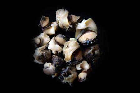 Escargots de mer (Rapana) extraits des coquilles et préparés pour cioppino. Mariscos. Coquillages, corps du mollusque retiré de la coquille, pieds de gastéropode