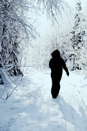 silhouette wayfarer, traveller in fractal snow-covered forest, winter walk, forest walk.