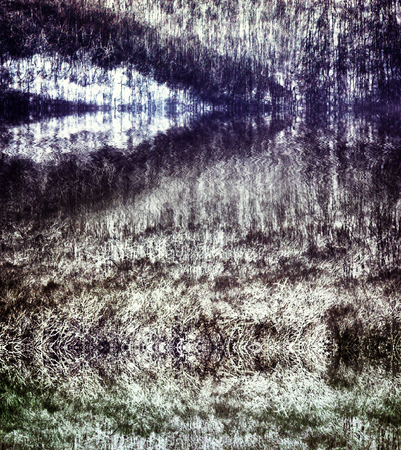 Abstract background. Hypothetical (conditional) forest and symmetries of macro-forms, invariance