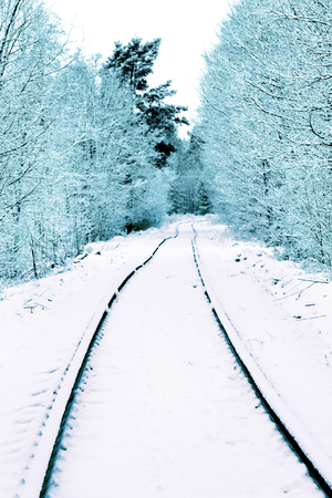 Single-track railway in the forest on which carry logs, unevenly laid rails. Snowfall covered the road