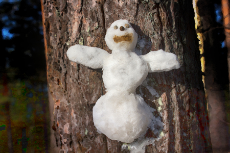 The figures are made of snow glued to any surface, such as a tree or a fence, zoological garden - snowman. New interesting Christmas winter fun for girls, children and youth, make snow