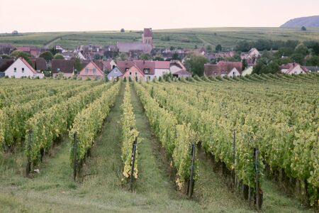 The vineyards and villages in Dijon, France Stock Photo