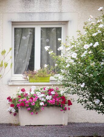 The window and flower beds in Dijon, France