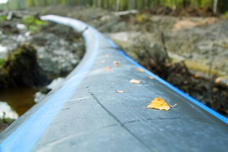 Plastic water pipe (pipeline) goes through forest areas in the North. Cut a clearing in the mixed autumn forest