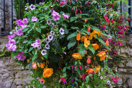 Various flowers in hanging baskets on stone wall.
