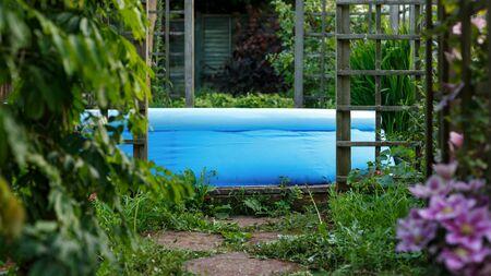 garden swimming pool in summer garden, backyard