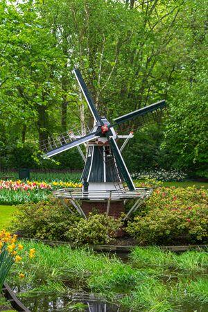 decorotive miniature Dutch windmill in tulip garden park Zdjęcie Seryjne