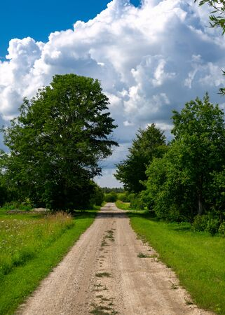 Rural road through green fields with trees and cloudy sky in countryside