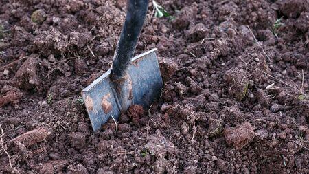 Shovel, garden spade in the ground, soil.