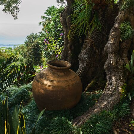 Beautiful Clay terracotta Pottery Decorative Vase in Jardim Tropical Garden Monte Palace, Madeira, October 10, 2019 에디토리얼