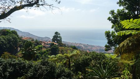 Monte Tropical Gardens with view of palace on Atlantic ocean, Funchal, Madeira island, Portugal.