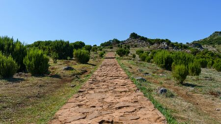 Beautiful panorama view of the stone footpath trail in the mountains of Pico Ruivo, Madeira. 스톡 콘텐츠