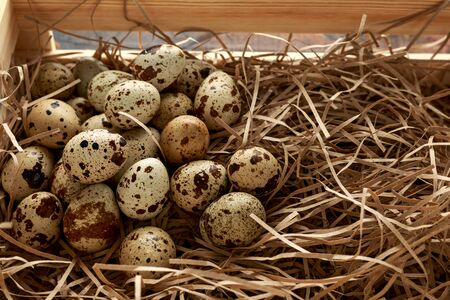 Quail eggs in wooden tray, basket with straw, nest. 스톡 콘텐츠
