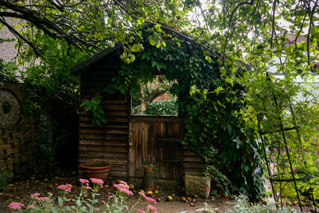 Old wooden garden shed with mirror on the door standing under apple tree